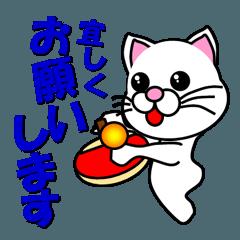しろ猫の卓球