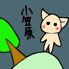 [LINEスタンプ] 小笠原さんとみんなのスタンプ (1)