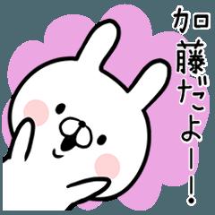 【加藤さん】専用名前ウサギ